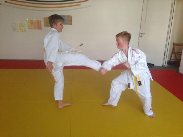 Kazoku – Judo